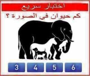 gambar hewan bahasa arab